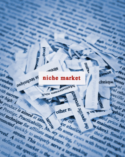 how to pick a niche How to Pick a Niche: Choosing a Profitable Niche