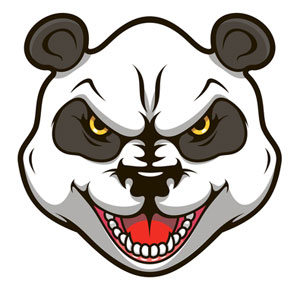 Google Panda: What's Next and Are You in Danger?